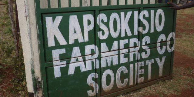 Filter: Kenya Kapsokisio