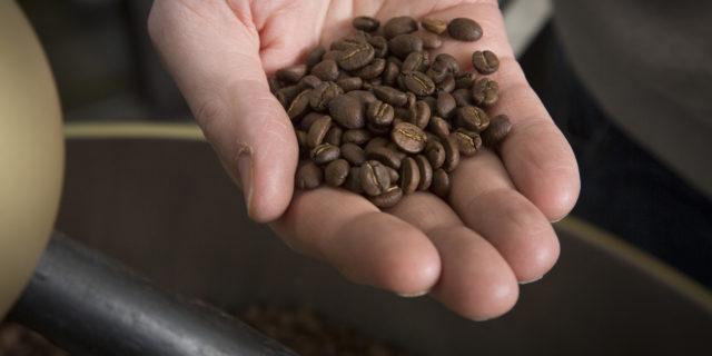 Espresso: Honduras Caballero Las Lomas #2 Natural (250gr)